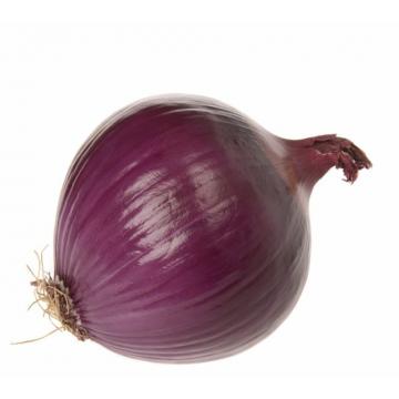 Onion red jumbo