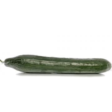 Cucumber Folie ~350 g