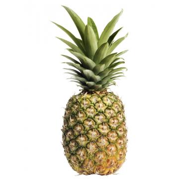 Pineapple Golden kg