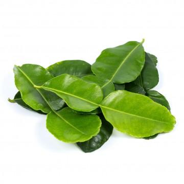 Lime Leaf -Kaffir